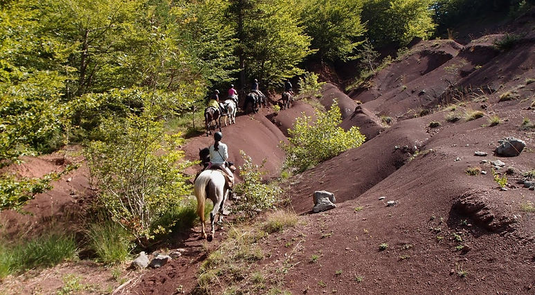 randonnée équestre Pyrénées Pays Cathare