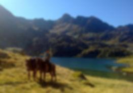 randonnée à cheval dans les 3 pays des Pyrénées : France , Andorre , Espagne