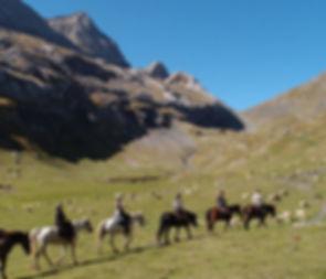 transpyrénéenne à cheval