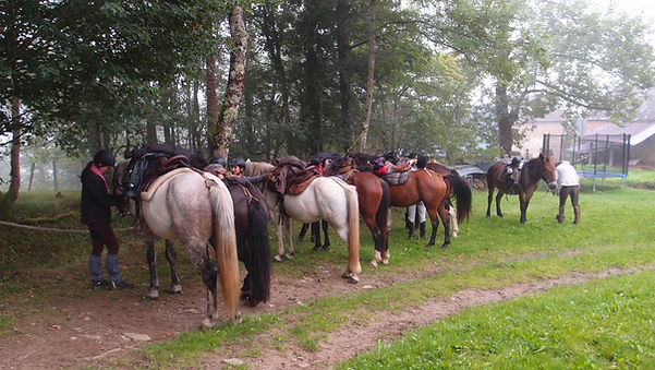 A cheval en Pyrénées et Pays cathare