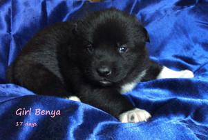 4 Benya.JPG