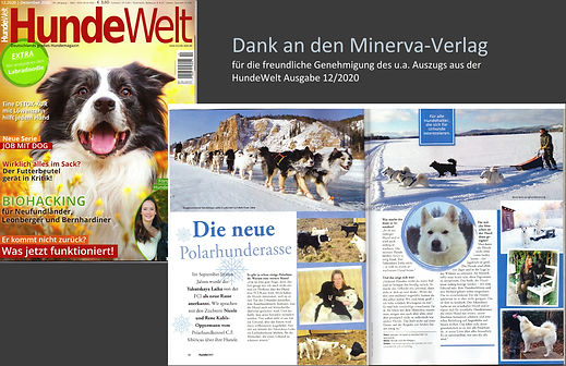 small article in a german dog-magazin
