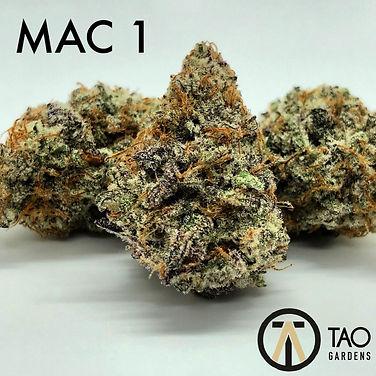 MAC 1.jpeg