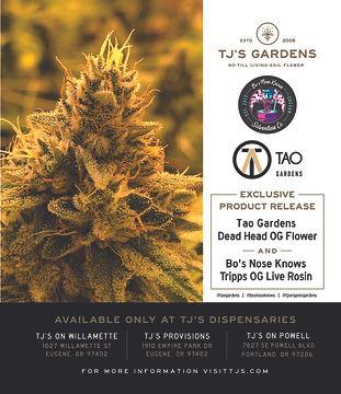 Tao Gardens Ad- October 19.jpg