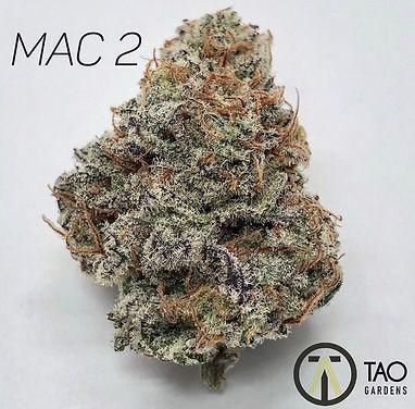 MAC 2.jpeg