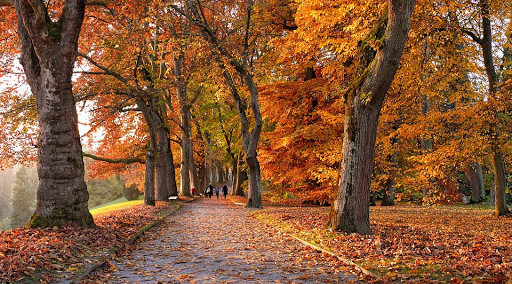 Un malinconico autunno italiano