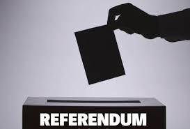 Referendum, la montagna ha partorito un virus