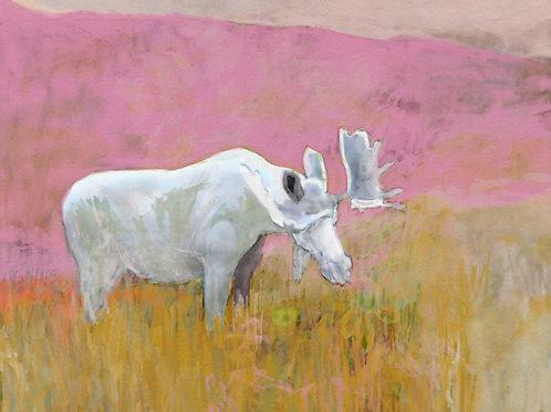 the white moose