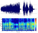 spectral analysis.jpg