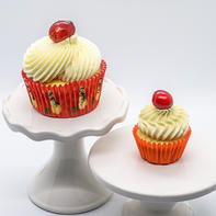 Cranberry White Chocolate Cupcake