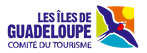 Logo CTIG copie.png