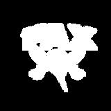 Logo FAX natik white.png