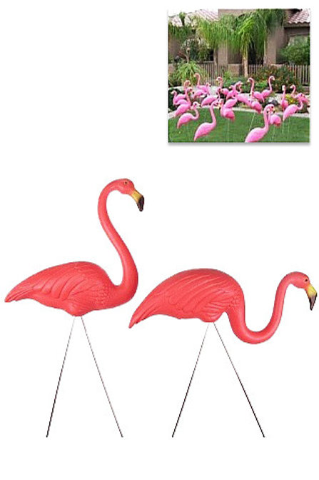 Flamingo: Pink Flamingos Parties or Weddings