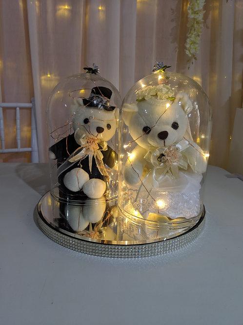 Mr & Mrs Bear under dome & lights set