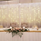 Thumbnail: Backdrop Scallop 6x3mtr H with fairylights
