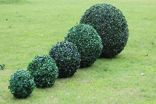 Boxwood Balls