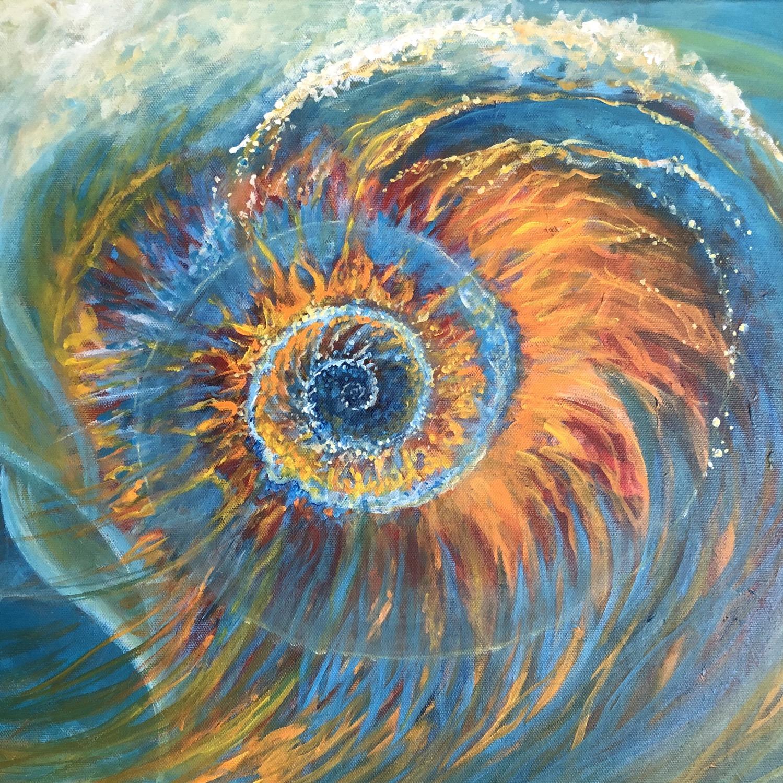 Nautilus - detail