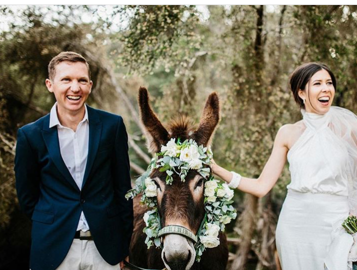 With Edith the Donkey bridesmaid
