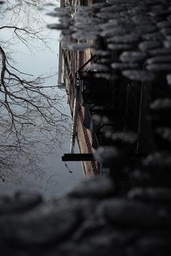 Flickr - Portal