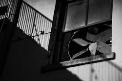 Flickr - Window_fan