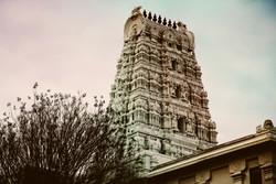 Temple_E.jpg