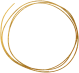 Gold Rings 1.png