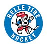 BT_Logo_small.png