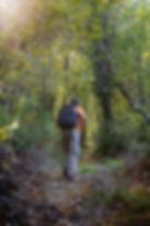Hiking Pelion