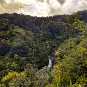 Traveling to Maui: Tips For a Quarantine Trip to Hawaii