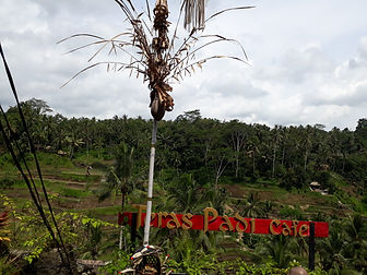 Bali 76.jpg