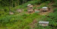 orang-asli-village 1 CH.jpg