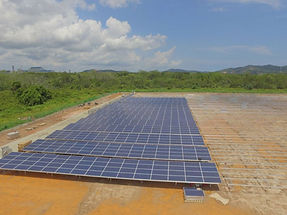 Solar field 1.jpg