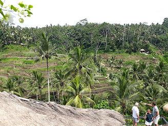 Bali 77.jpg