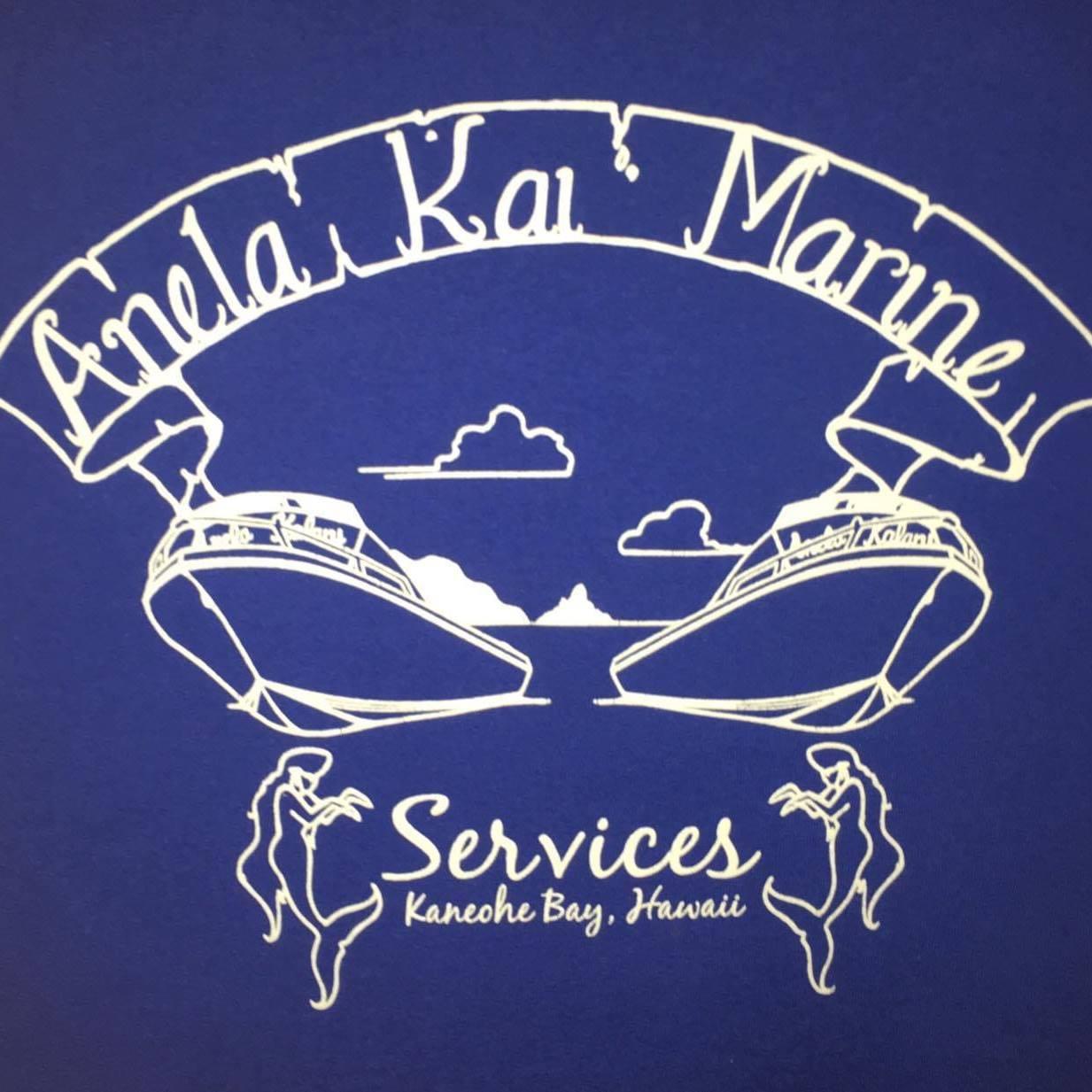 AKMS Logo