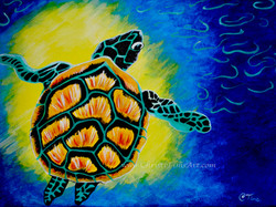 Sea Turtle by Christi Tims