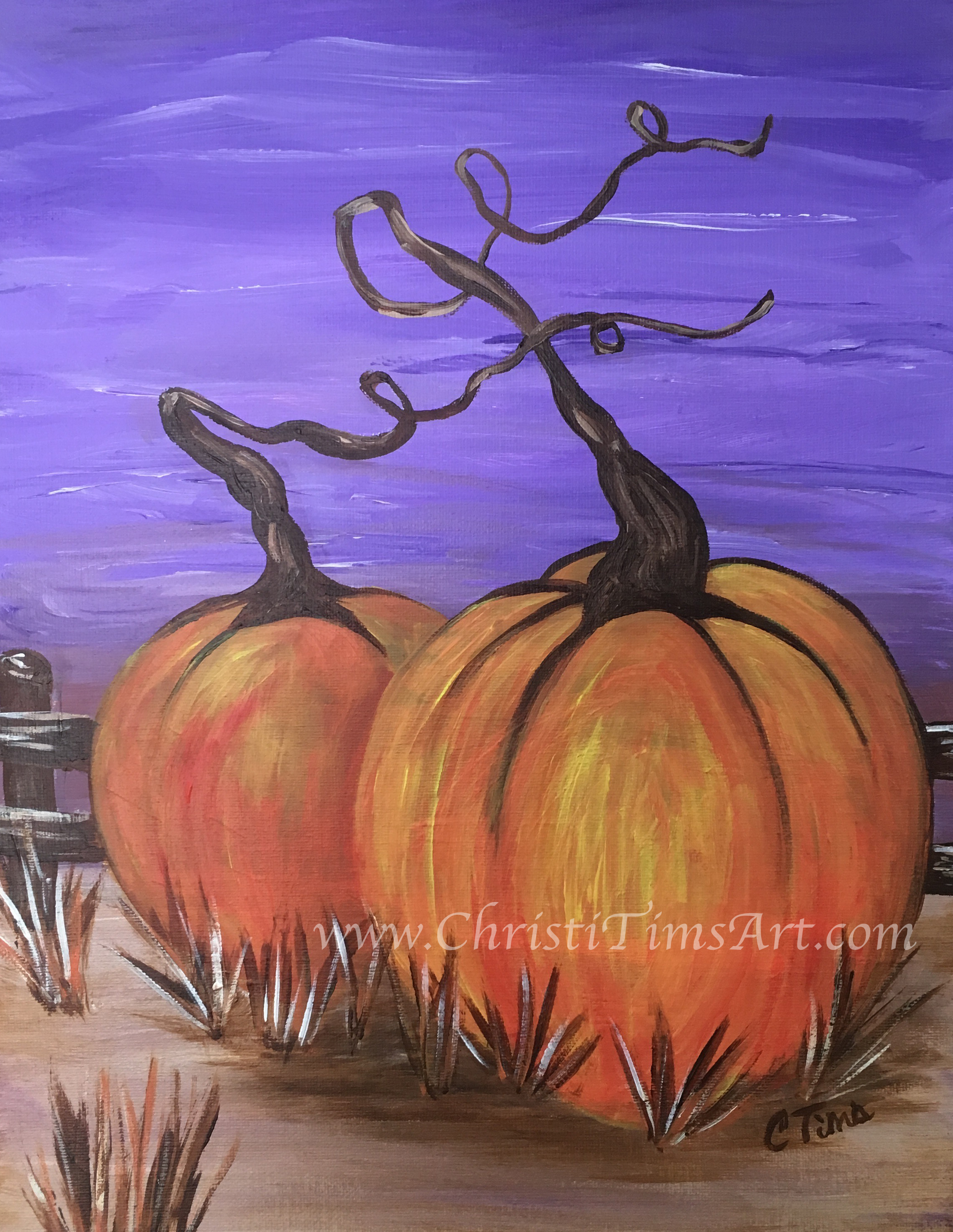 Pumpkins by Christi Tims