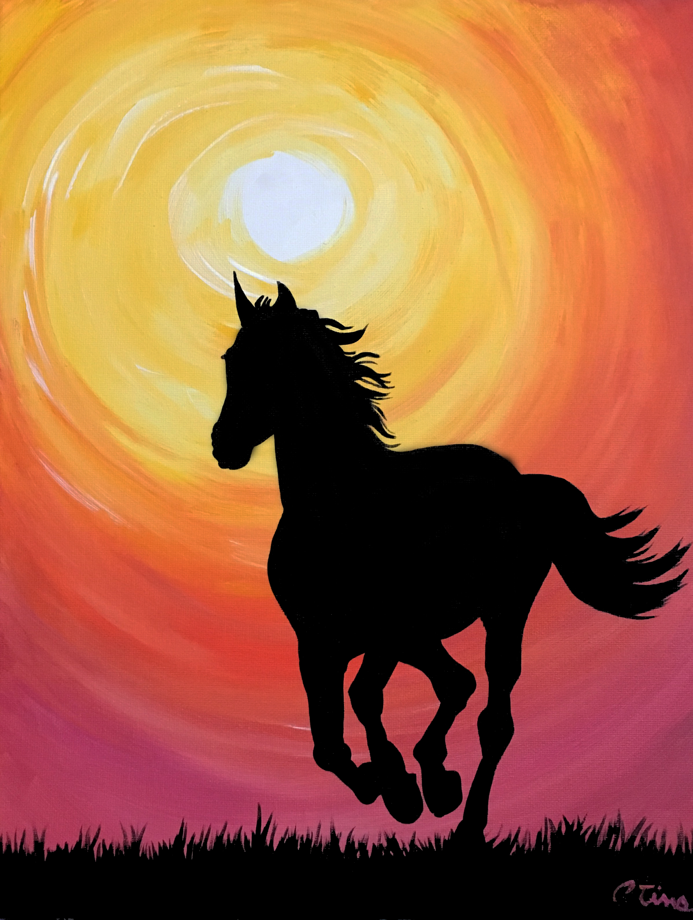 Wild Horse by Christi Tims