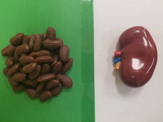 Not The Beans..But your REAL KIDNEYS!