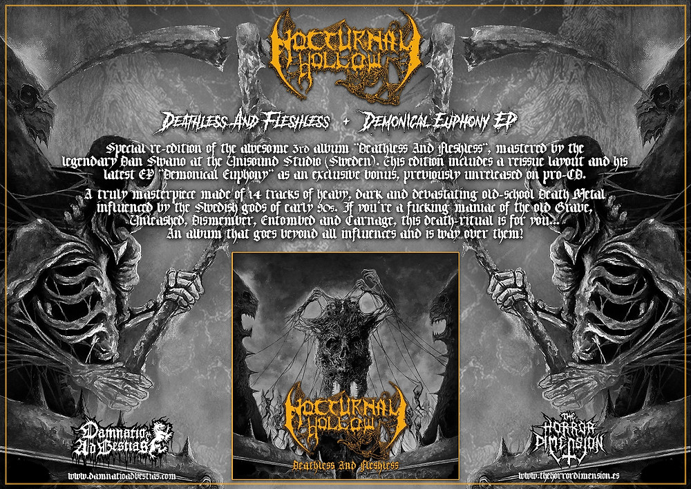 Nocturnal Hollow flyer