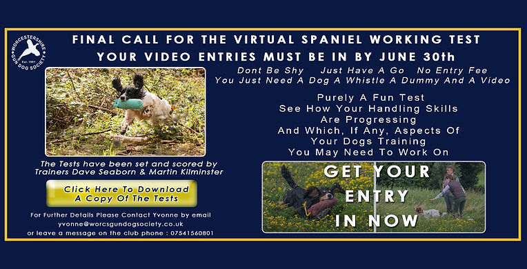 WGDS-Virtual-Spaniel-Working-Test-final-