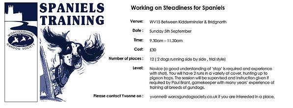 Steadiness-Training-Paul-Brant.jpg