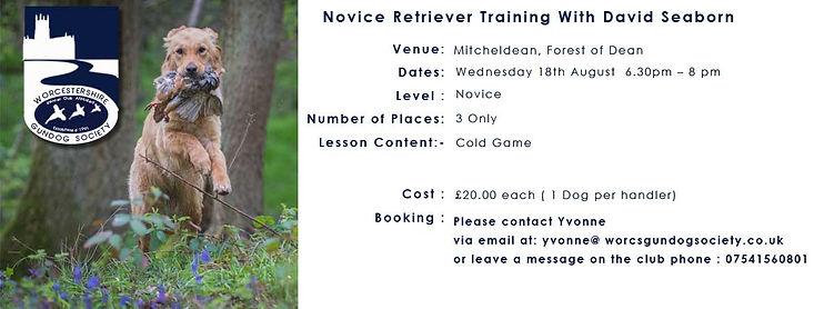 Retriever-Novice-Training-With-David-Seaborn.jpg