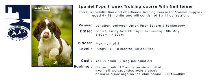 Puppy-Training-For-Spaniels-6-Week-Cours