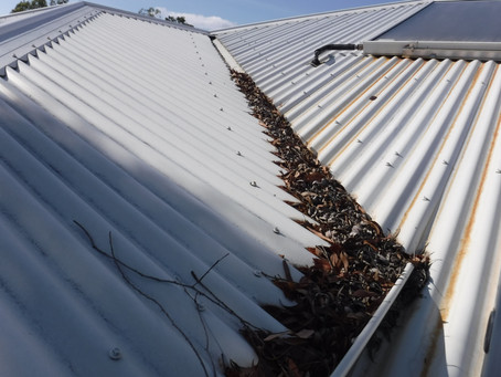 Check Your Gutters