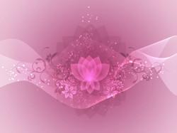 lotus_edited