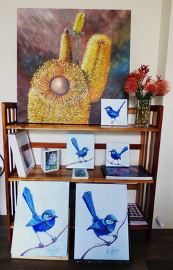 Blue Wrens 041