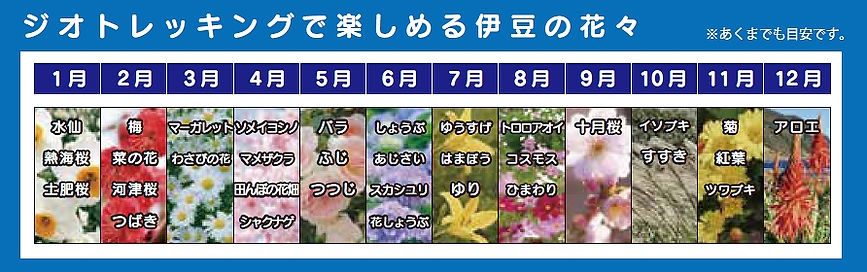 伊豆の花のカレンダー.jpg