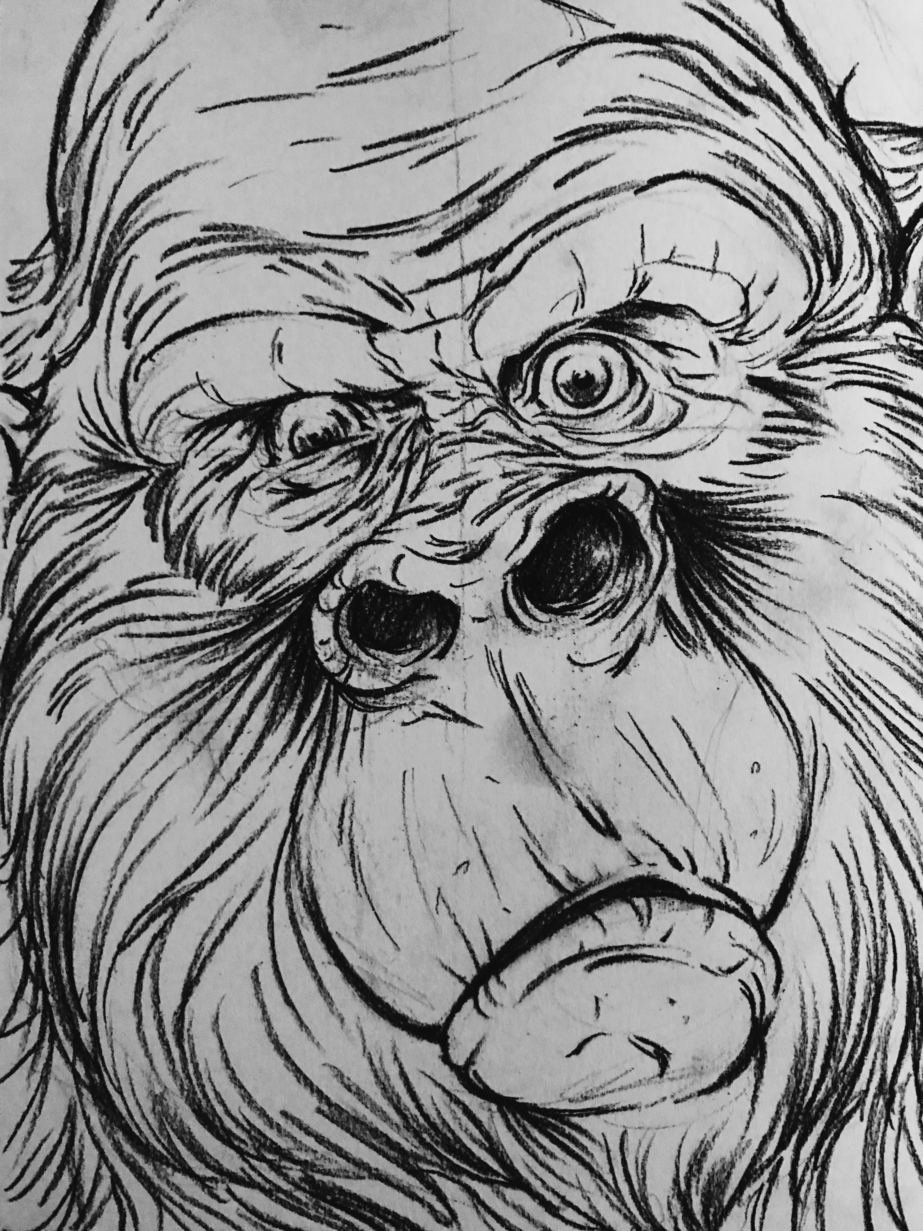 gorillasketch