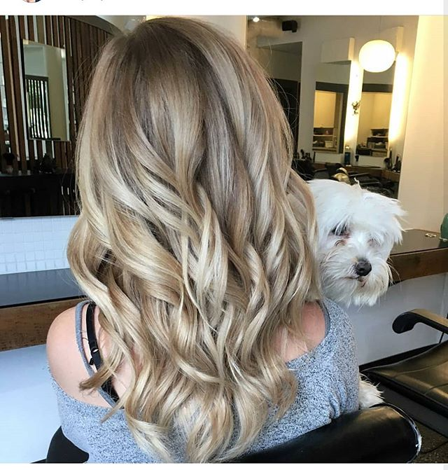 Beautiful blonde done by Lauren ❤️ #zinc