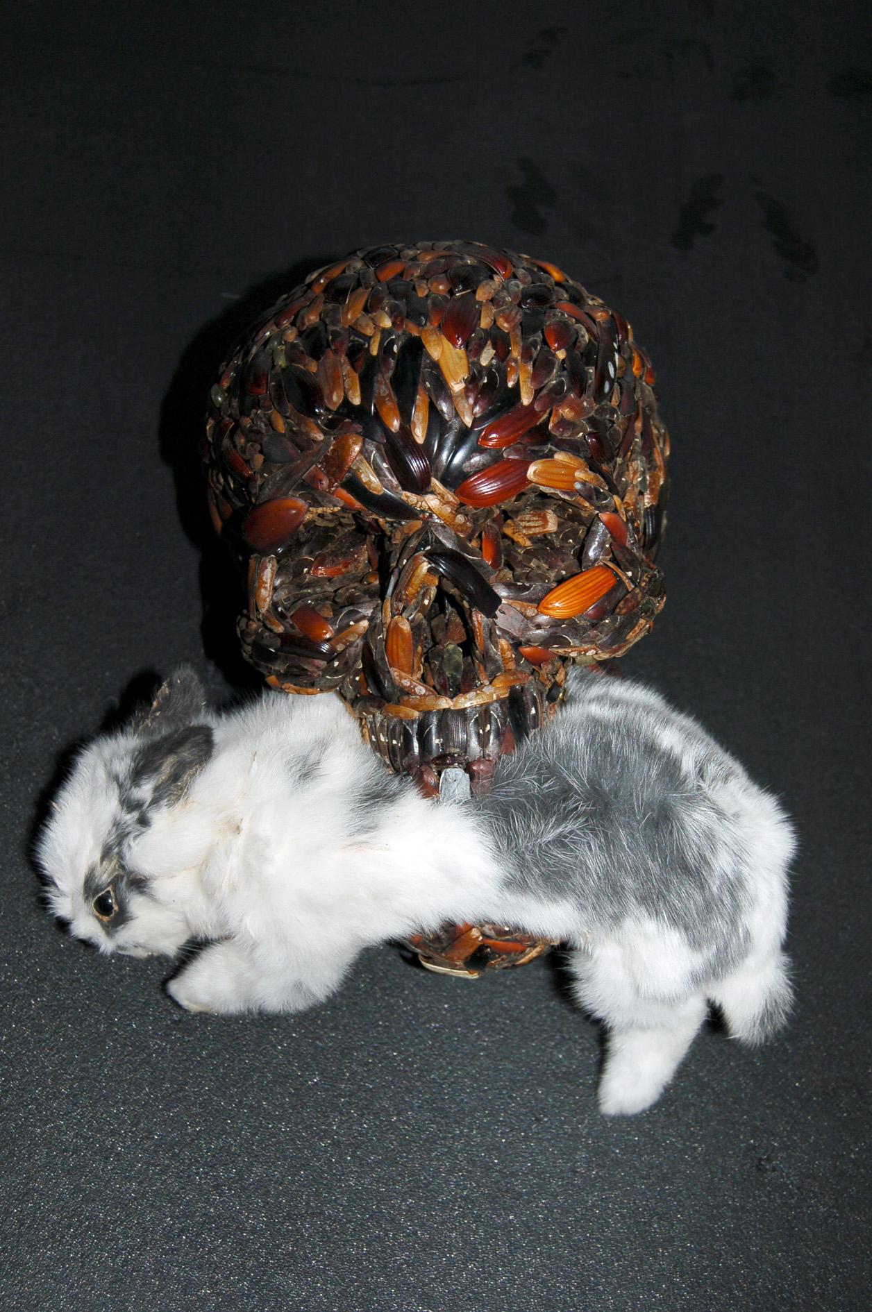 Memento mori (With White Rabbit)